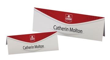 AVERY Cartes de nom imprimables 20 feuilles, 20 pièces (ft 210 x 60 mm)